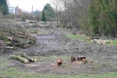 """""""Hochwassersschutz"""" an der Bega in Lemgo. Hierfür wurden über 100 Bäume gefällt. Gesunde Wälder und ökologischer Landbau sind der beste Hochwasserschutz - Foto: Frank Möller"""